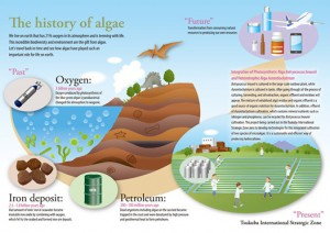 Project3 Practical Use of Algal Biomass Energy | Tsukuba