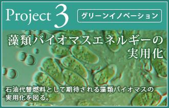 藻類バイオマスエネルギーの実用化